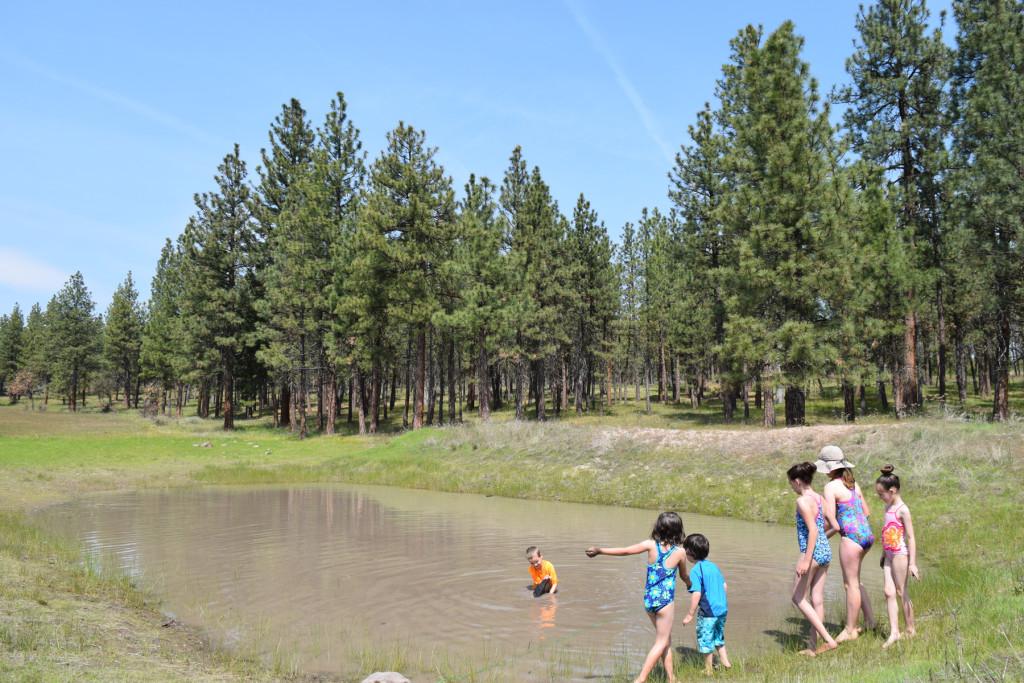 Play_pond