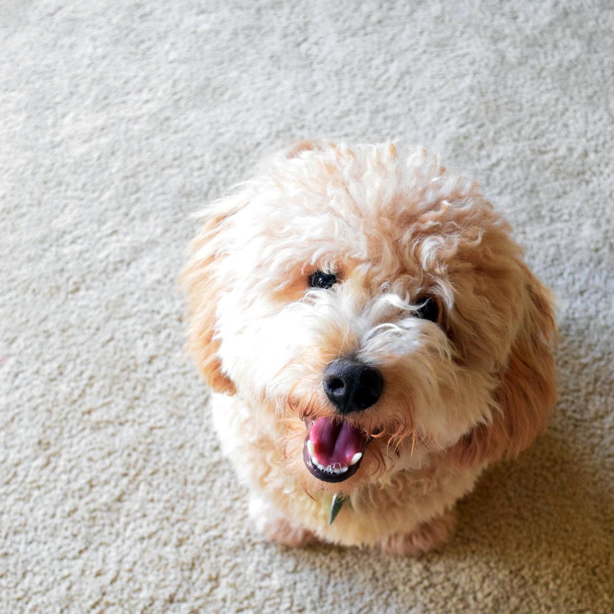 So smiling
