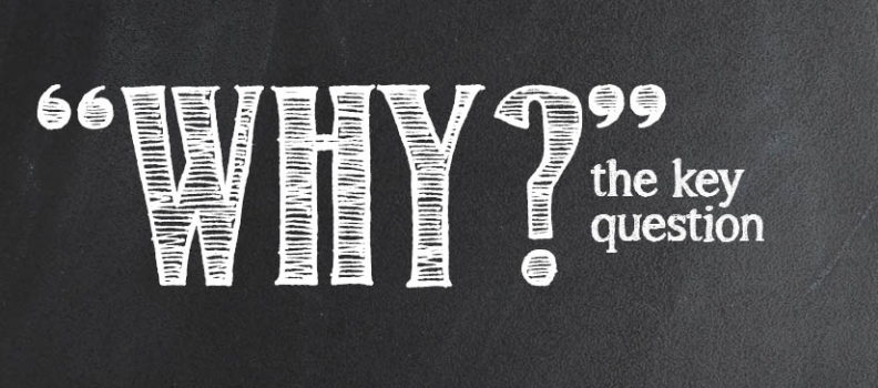 WHY?: the key question for an eternal education